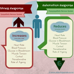 Stress & Relaxation Response